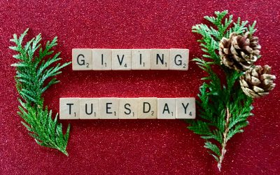 Disability Organizations to Support on GivingTuesday
